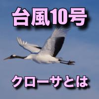 クローサ(台風10号)とは?意味と由来はカンボジアの鶴?画像で確認!
